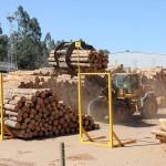 Bosbouwindustrie speelt een belangrijke rol