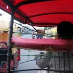 Fried eindelijk in een motorkar, op weg naar een bank om sol's te scoren