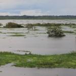 De Amazonerivier vanaf de boulevard van Iquitos