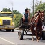 Vervoeren kan op verschillende manieren